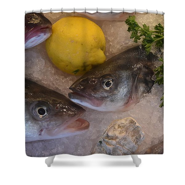 Fresh Fish Shower Curtain