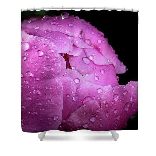 Freshly Rinsed Shower Curtain