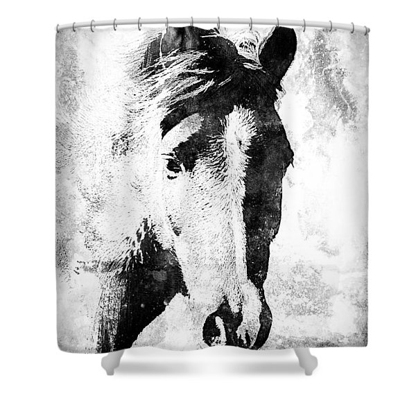 Friend-bw Shower Curtain