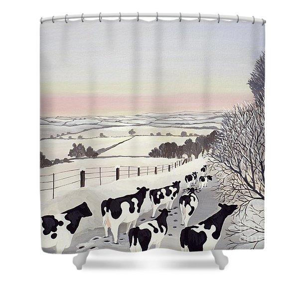 Friesians In Winter Shower Curtain