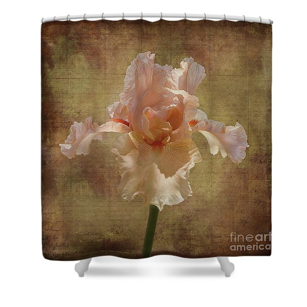 Frilly Iris Shower Curtain