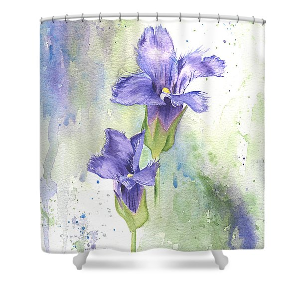 Fringed Gentian Shower Curtain