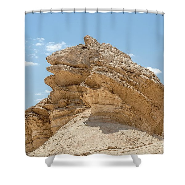 Frog Rock Shower Curtain
