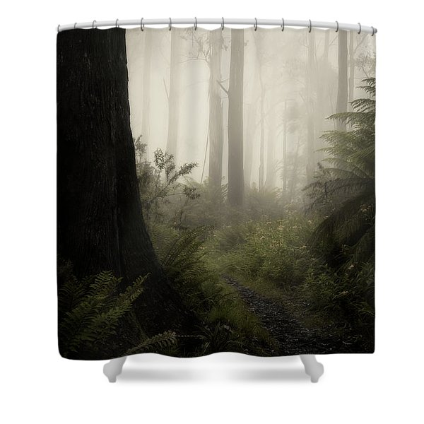 From Darkness Shower Curtain