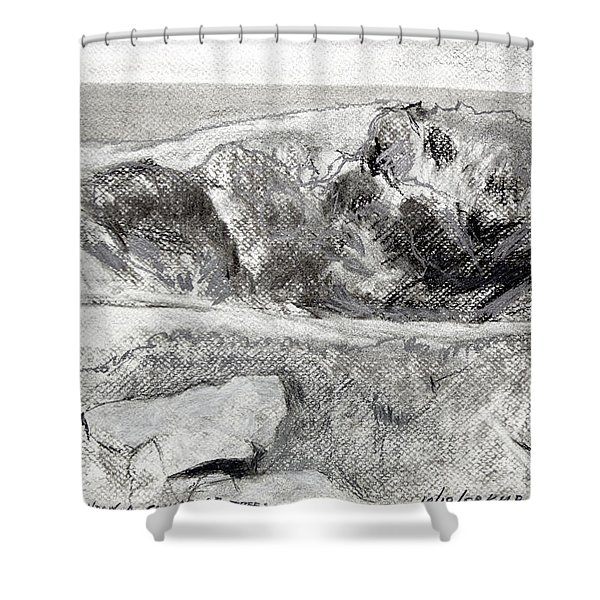 From My Window A Clump Of Trees Shower Curtain