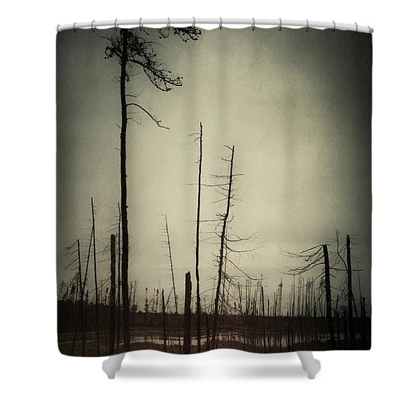From The Ashes Shower Curtain