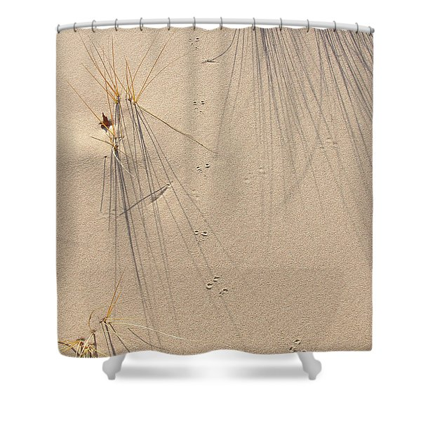 From Where They Come Shower Curtain