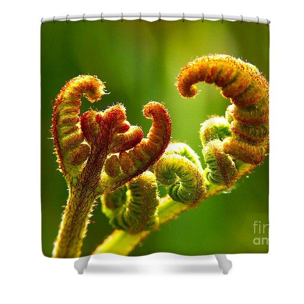 Frond Fern Shower Curtain