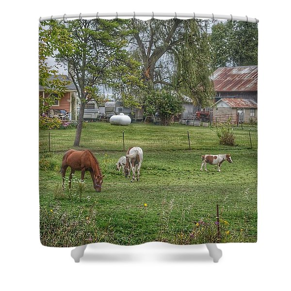 1008 - Front Yard Ponies Shower Curtain
