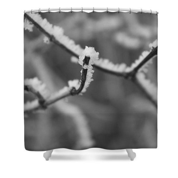 Shower Curtain featuring the photograph Frost 6 by Antonio Romero