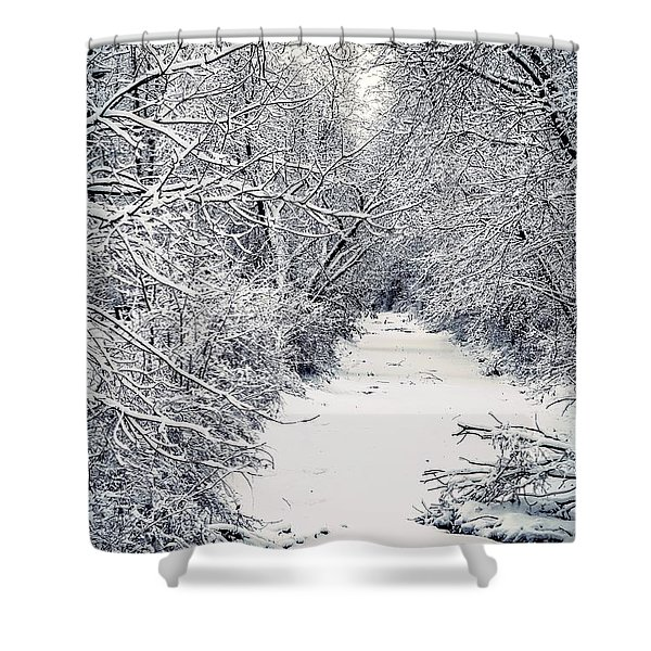 Frosted Feeder Shower Curtain