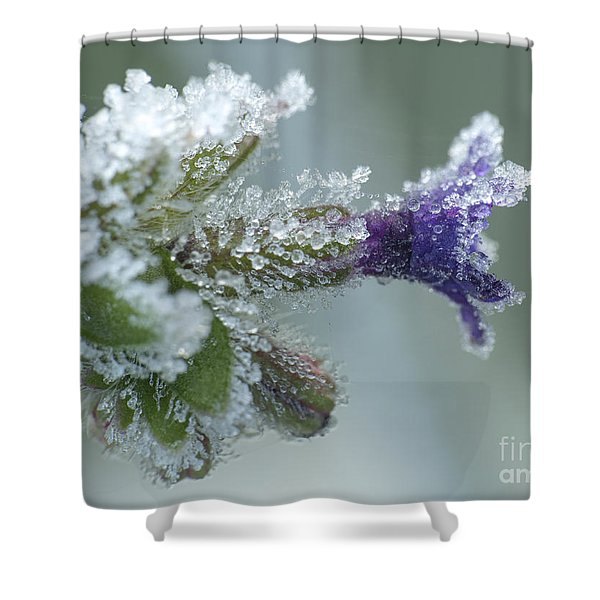 Frosty Flower Shower Curtain