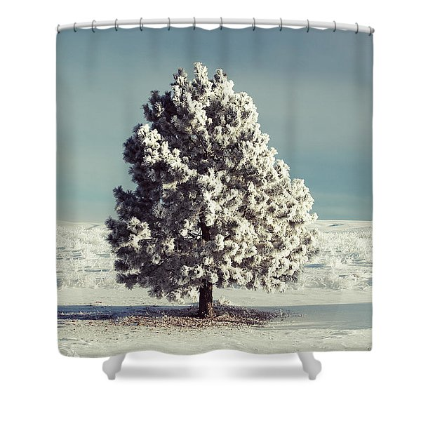 Frosty The Tree Shower Curtain