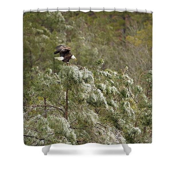 Frozen Call Shower Curtain