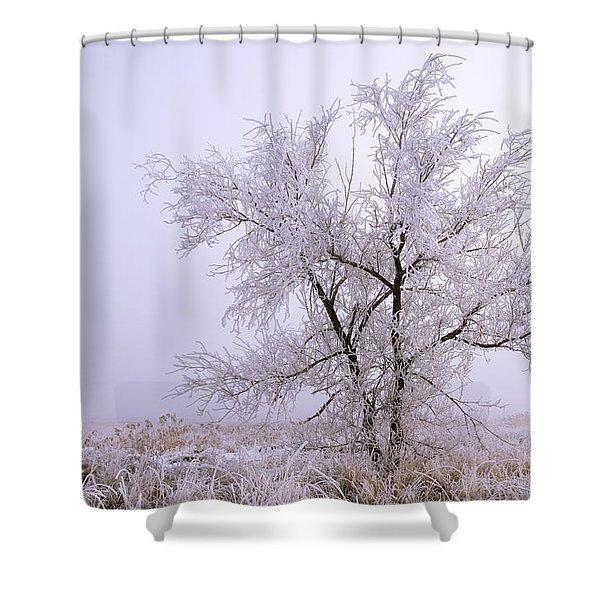 Frozen Ground Shower Curtain