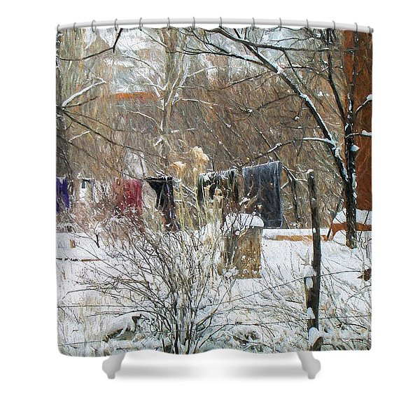 Frozen Laundry Shower Curtain