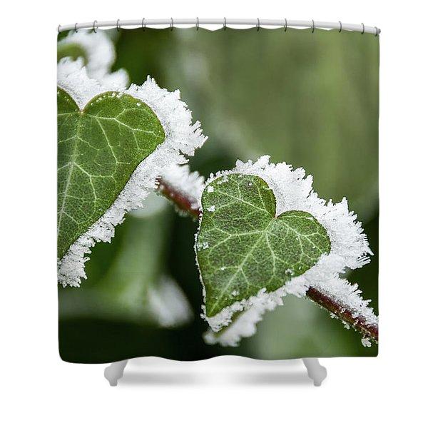 Frozen Love Shower Curtain
