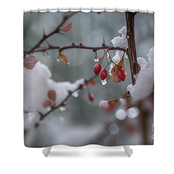 It's Berry Cold Shower Curtain