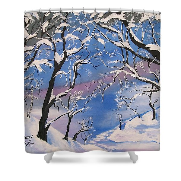 Frozen Tranquility  Shower Curtain