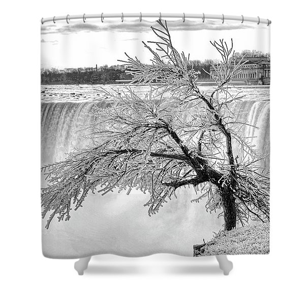 Frozen Tree Near Niagara Falls Shower Curtain