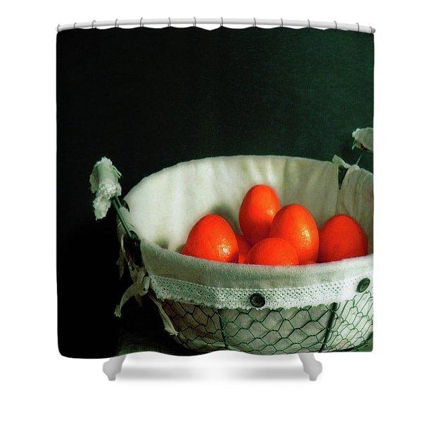 Fruit Art 24 Shower Curtain