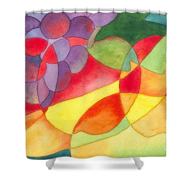Fruit Montage Shower Curtain
