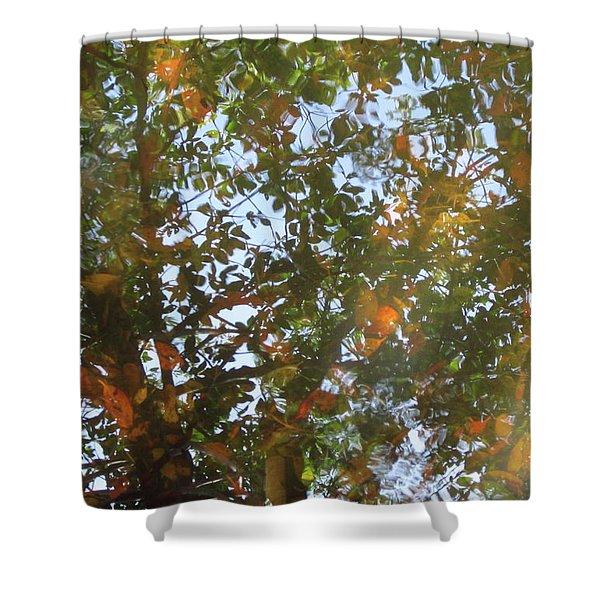 Aqueous Reflections 4 Shower Curtain