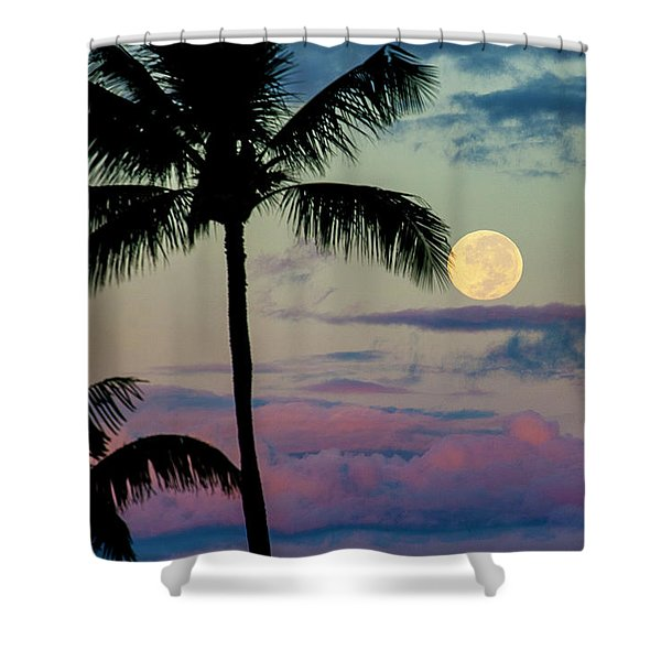Full Moon And Palm Trees Shower Curtain