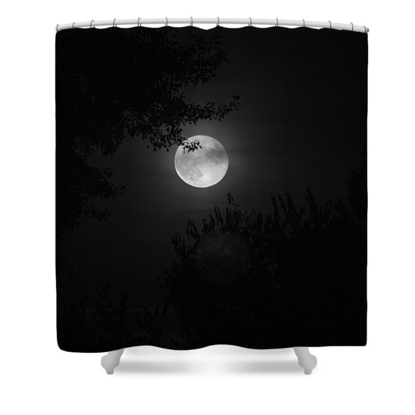 Full Moon With Branches Shower Curtain