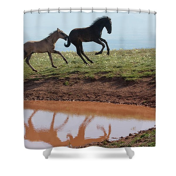 Fun In The Rockies- Wild Horse Foals Shower Curtain