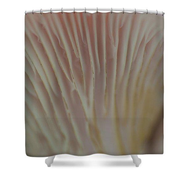Fungi - 9388 Shower Curtain
