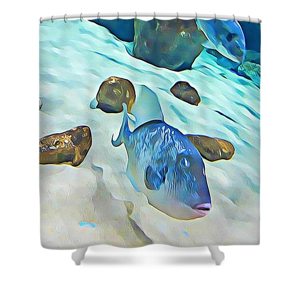 Funny Fish Shower Curtain