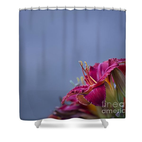 Shower Curtain featuring the photograph Fuchsia On Slate by Andrea Silies