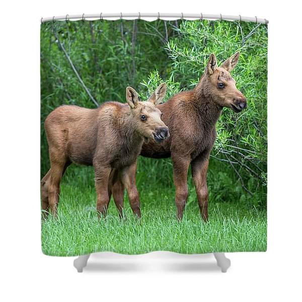 Future King  Shower Curtain