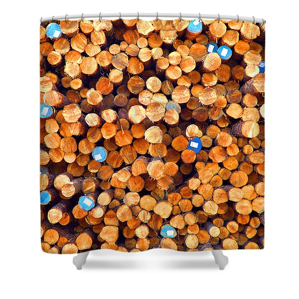 Future Two By Fours Shower Curtain