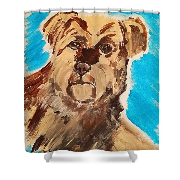 Fuzzy Boy Shower Curtain