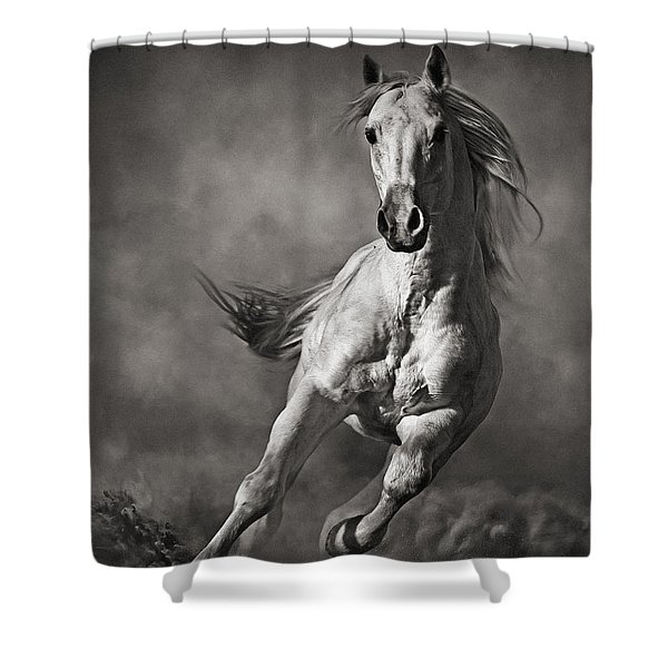 Galloping White Horse In Dust Shower Curtain