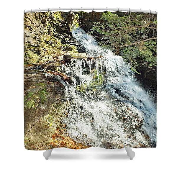 Ganoga Falls 5 - Ricketts Glen Shower Curtain