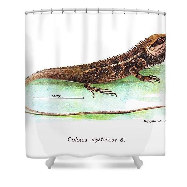 Garden Lizard Shower Curtain