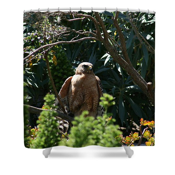 Shower Curtain featuring the photograph Garden Rest by Cynthia Marcopulos