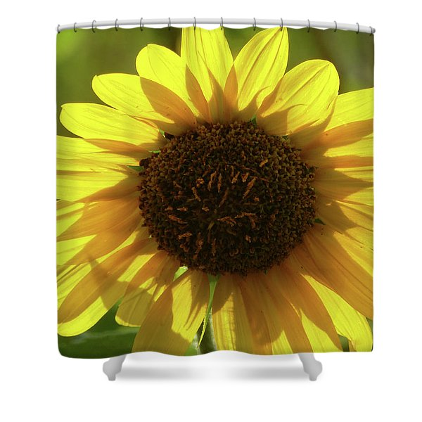 Shower Curtain featuring the photograph Garden Sunshine by Cris Fulton