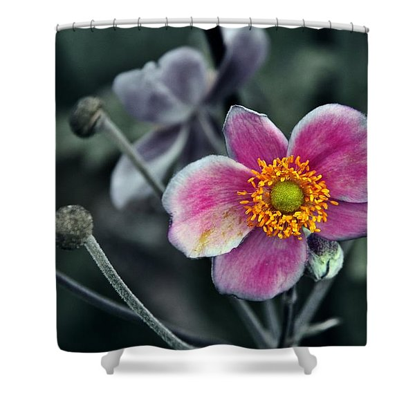 Garden Treasure Shower Curtain