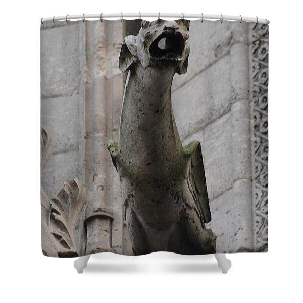 Gargoyle Notre Dame Shower Curtain