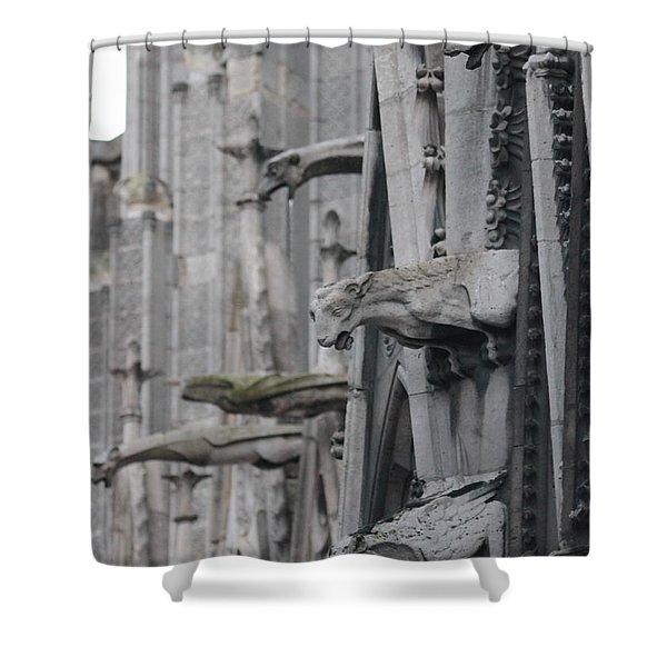 Gargoyles North Notre Dame Shower Curtain