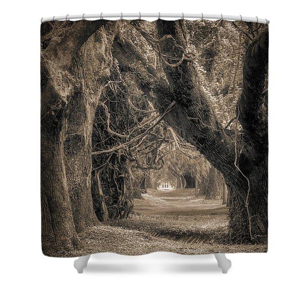 Gateway Through An Avenue Of Live Oaks Shower Curtain