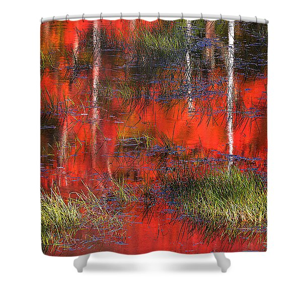 Gatineau Marsh Fall Colors Shower Curtain