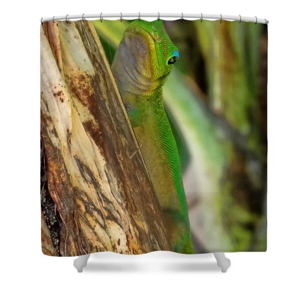 Gecko Up Close Shower Curtain