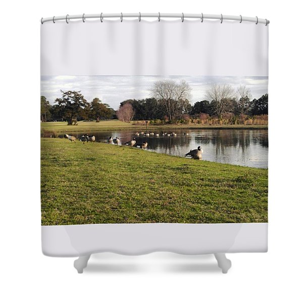 Geese Shower Curtain