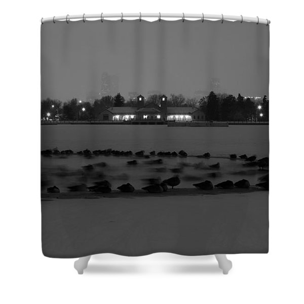 Geese In Frozen Lake Shower Curtain