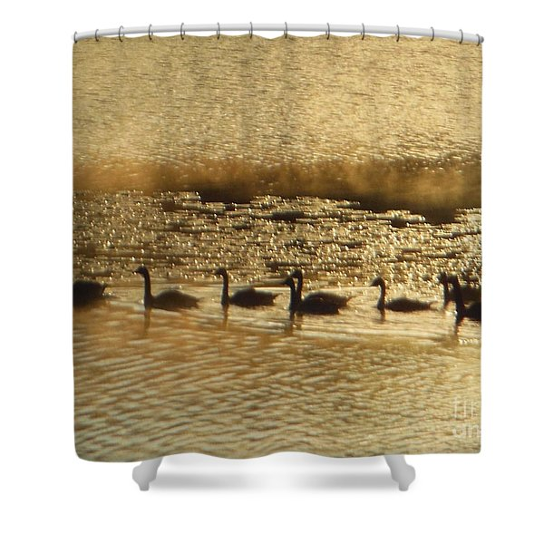 Geese On Golden Pond Shower Curtain
